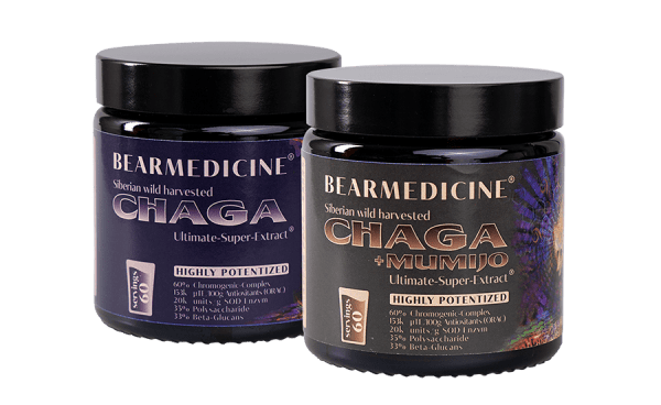 Chaga + Mumijo & Chaga pure Ultimate-Super Extract 60% Chromogens (jars: 2 x 60 daily servings)