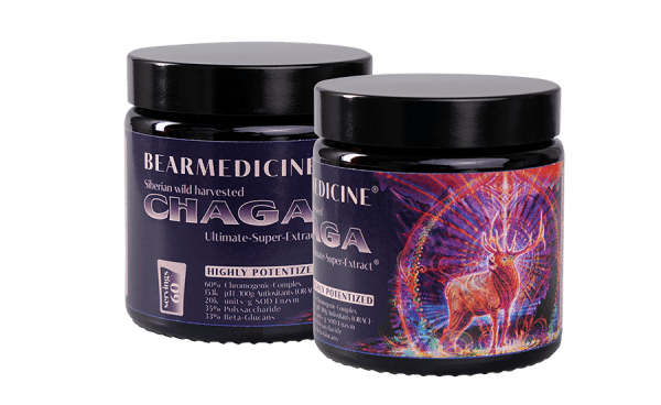 2 x Chaga pure Ultimate Super Extract 60% Chromogenic Complex