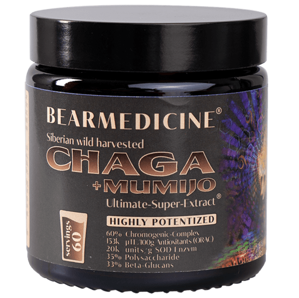 3 x Chaga + Mumijo pure Ultimate Super Extract 60% Chromogenic Complex