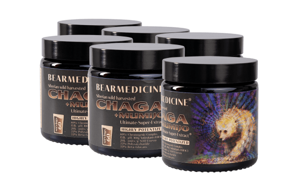 4 + 2 free Chaga + Mumijo pure Ultimate Super Extract 60% Chromogenic Complex (Copy)